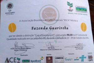 GuarirobaCOE00002